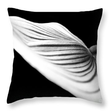 Orchid Petal #1 Throw Pillow