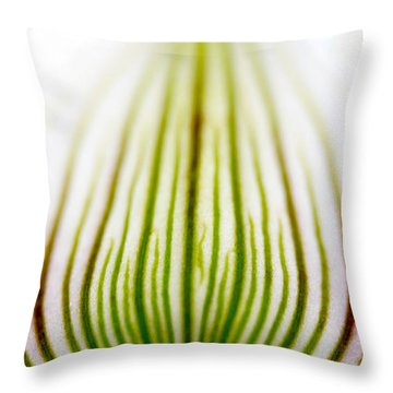 Orchid Petal #2 Throw Pillow