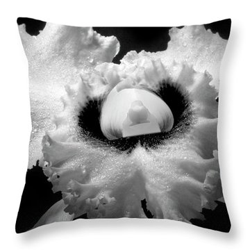 Orchid With Black Wings Throw Pillow by Frederic A Reinecke
