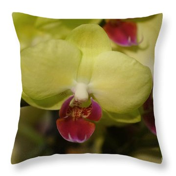 Orchids 181 Throw Pillow
