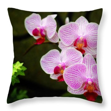 Orchids And Ivy Throw Pillow