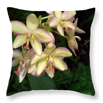 Orchids Throw Pillow by Don Wright