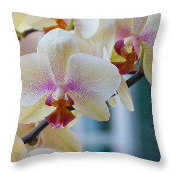 Orchids In The Morning Light Throw Pillow by Debbie Karnes