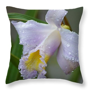 Orchids In The Wild Throw Pillow