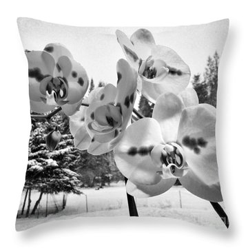 Orchids In Winter Throw Pillow