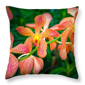 Orchids Throw Pillow by Inge Johnsson
