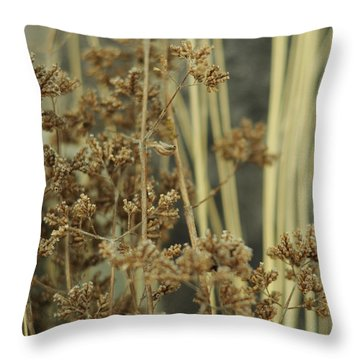 Throw Pillow featuring the photograph Oregano In Winter by Rebecca Sherman