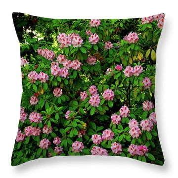 Oregon Azaleas Throw Pillow by Ed  Riche