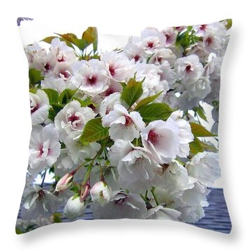 Oregon Cherry Blossoms Throw Pillow