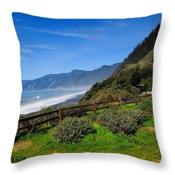 Oregon Coast Throw Pillow by Donald Fink