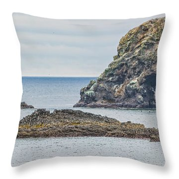 Oregon Coast Ecola State Park Throw Pillow