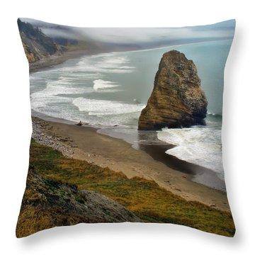 Oregon Coast Throw Pillow by Priscilla Burgers