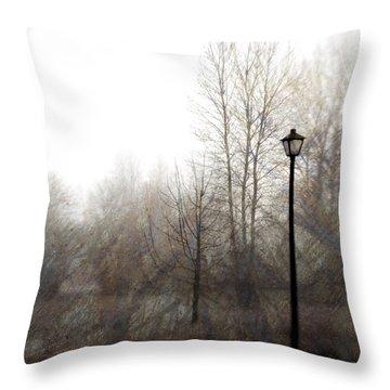Oregon Winter Throw Pillow by Carol Leigh