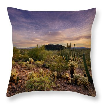 Organ Pipe Cactus Sunset  Throw Pillow by Saija  Lehtonen