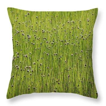 Organic Green Grass Backround Throw Pillow