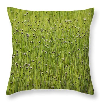 Organic Green Grass Backround Throw Pillow