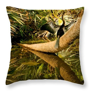 Oriental Darter Anhinga Melanogaster Throw Pillow