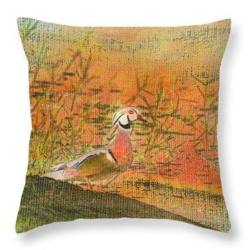 Oriental Duck Throw Pillow by Deborah Benoit