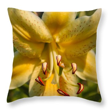Oriental Lily Throw Pillow by Omaste Witkowski