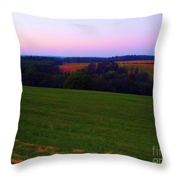 Original Woodstock Concert Site - Back To The Garden Throw Pillow