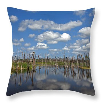 Orlando Wetlands Cloudscape 3 Throw Pillow by Mike Reid