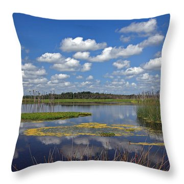 Orlando Wetlands Park Cloudscape 4 Throw Pillow by Mike Reid