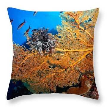 Throw Pillow featuring the photograph Ornament by Aaron Whittemore