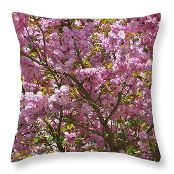 Ornamental Cherry Tree Throw Pillow by Sharon Talson