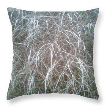 Ornamental Grasses 1 Throw Pillow