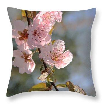 Ornamental Plum Tree Pink Flower Blossoms Throw Pillow by Jennie Marie Schell