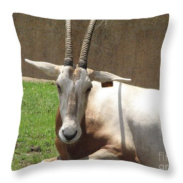 Oryx Throw Pillow by DejaVu Designs
