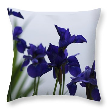 Throw Pillow featuring the photograph Osaka Garden by Miguel Winterpacht