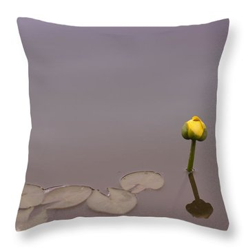 Throw Pillow featuring the photograph Osaka Garden Tranquility by Miguel Winterpacht