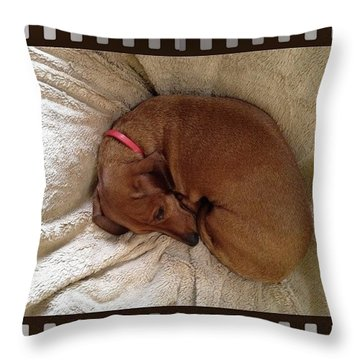 Oscar The Hot Dog Throw Pillow
