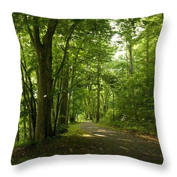 Throw Pillow featuring the photograph Osceola Island Bristol Tennessee  by Denise Beverly