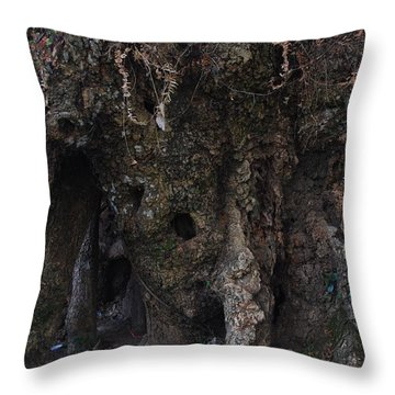 Oso Hormiguero Throw Pillow