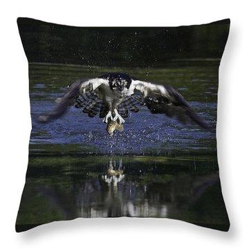 Osprey Bird Of Prey Throw Pillow