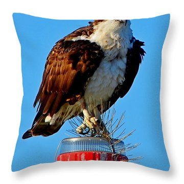Throw Pillow featuring the photograph Osprey Close-up On Water Navigation Aid by Jeff at JSJ Photography