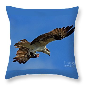 Osprey Delivery Throw Pillow by Larry Nieland