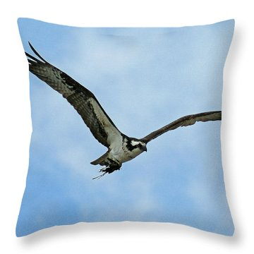 Osprey Nest Building Throw Pillow by Ernie Echols