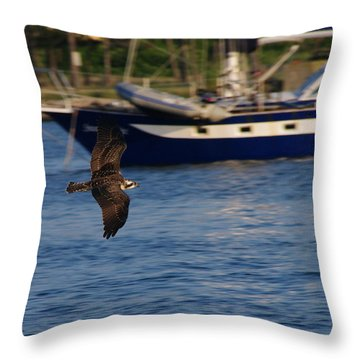 Throw Pillow featuring the photograph Osprey On The Hunt by Greg Graham