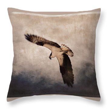 Designs Similar to Osprey Over The Columbia River