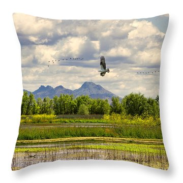 Osprey Over The Wetlands Throw Pillow