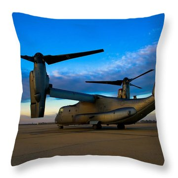 Osprey Sunrise Series 1 Of 4 Throw Pillow