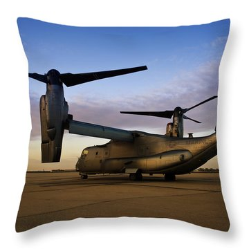 Osprey Sunrise Series 3 Of 4 Throw Pillow