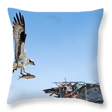 Osprey With Fish Throw Pillow by Bonnie Fink