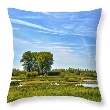Ossenwaard Near Deventer Throw Pillow