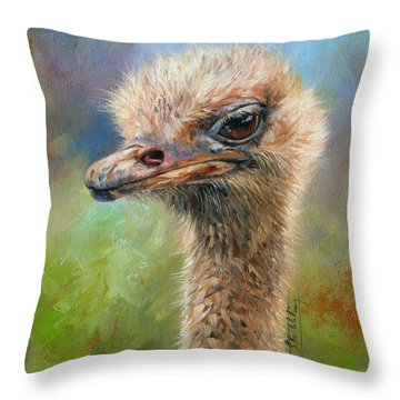 Ostrich Throw Pillow by David Stribbling