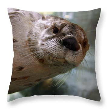 Otter Be Lookin' At You Kid Throw Pillow