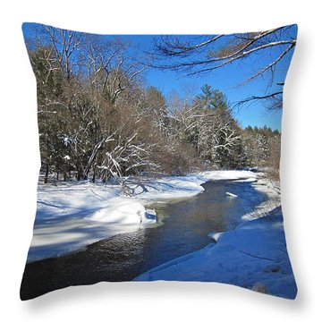 Otter Brook In Winter Throw Pillow